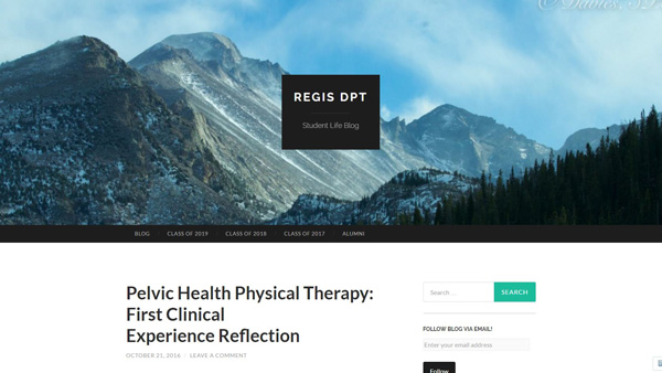 One of the best physical therapy student blogs in USA